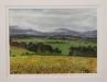 1st Place - John Adeney - _Riverstone Estate_ - Les Godfrey - Watercolour cs